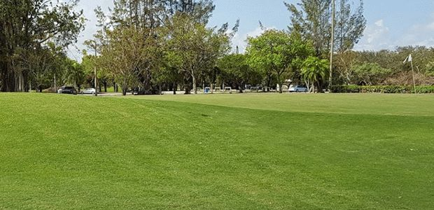 Miami Springs Golf and Country Club 2