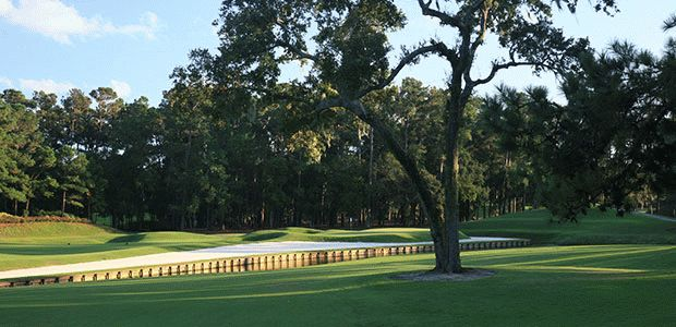 TPC® Sawgrass - THE PLAYERS Stadium 0