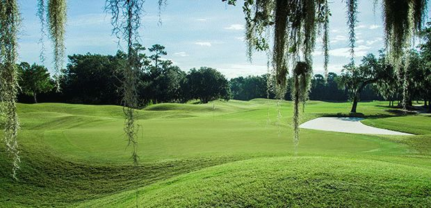 TPC® Sawgrass - Dye's Valley 1