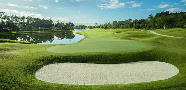 TPC® Sawgrass - Dye's Valley 2